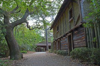 """La """"colonia perduta"""" di Roanoke"""