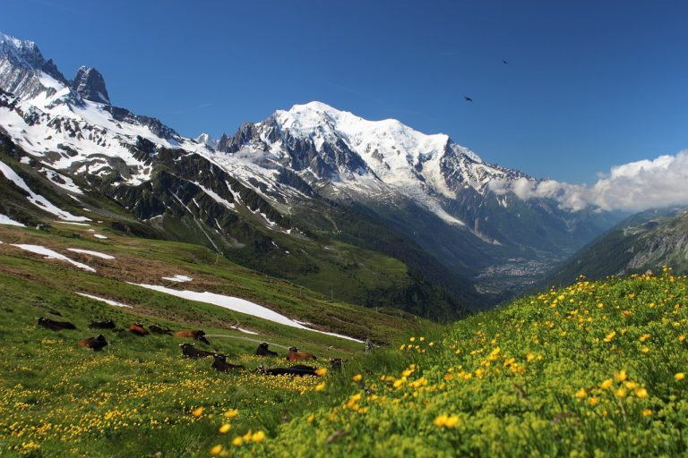 altezza del Monte Bianco