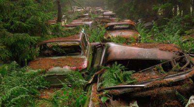 Macchine al Chatillon Car Graveyard (Belgio)