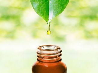 Cinque modi per usare il tea tree oil