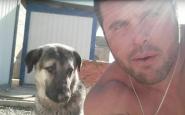 Soldato ritrova cane curato durante la missione in Iraq