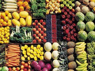 Dieta Lemme completa vegetariana