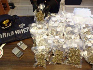 Genova: 6 kg di droga nella cantina di un 30enne