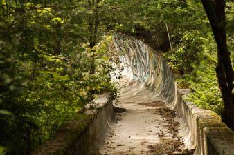 Il bosco inghotte  la pista, sulla cui parete ci sono graffiti