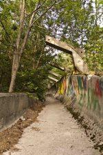 Altri graffiti sul una parete della pista nel bosco