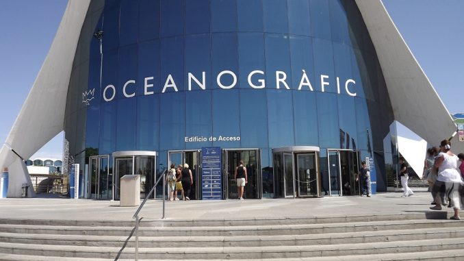 Valencia acquario oceanografico: prezzi