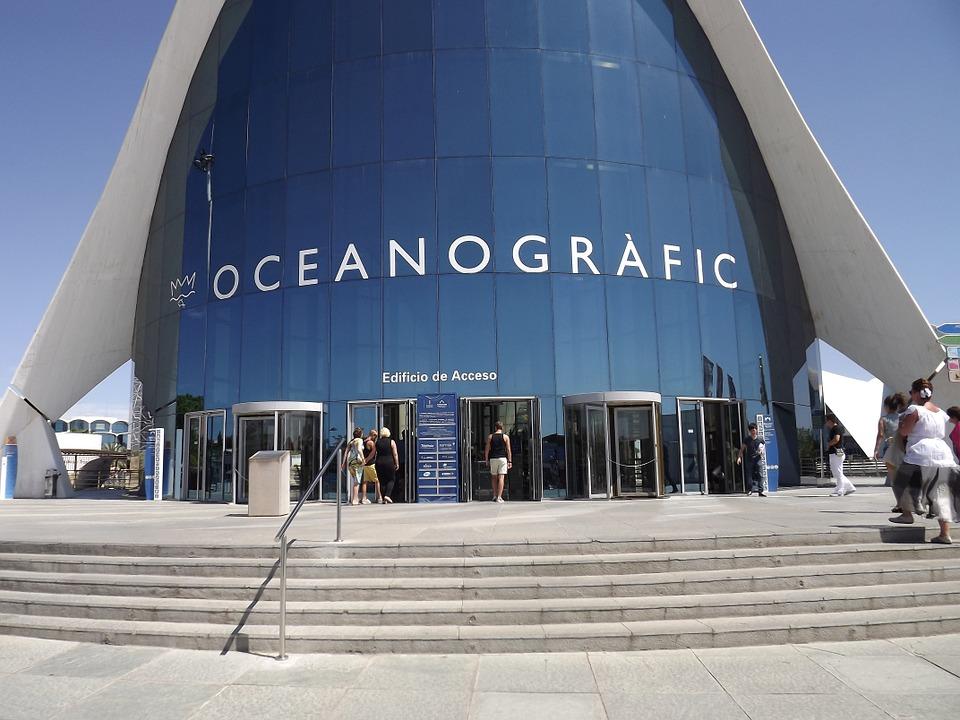 Valencia acquario oceanografico prezzi for Acquario casa prezzi
