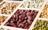 alimenti con estrogeni
