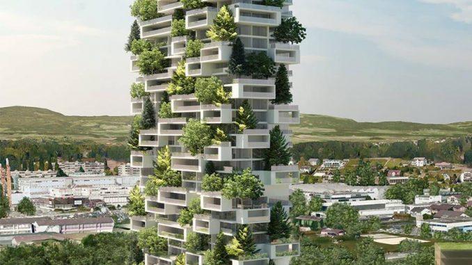 Asia, ecco come saranno le foreste del futuro