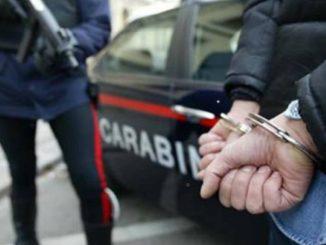 Milano: droga nelle cassette di frutta e verdura. Trovati 60 kg di Marijuana e 500 gr di hashish