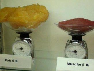 peso ideale: essere pesanti non vuol dire sempre essere grassi