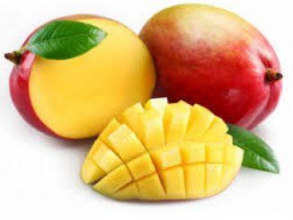 Ricette facili col mango