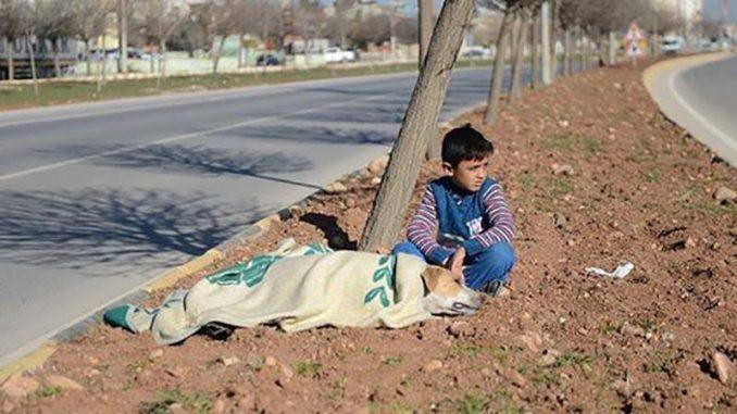 Bambino rifugiato aiuta cane e aspetta l'arrivo dei soccorsi