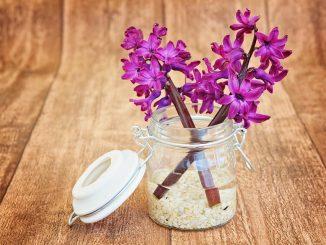 10 idee per far profumare la vostra casa