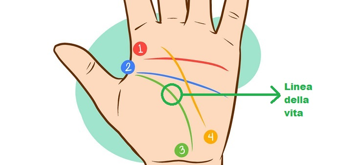 670px-Read-Palm-Lines-Step-2-Version-61