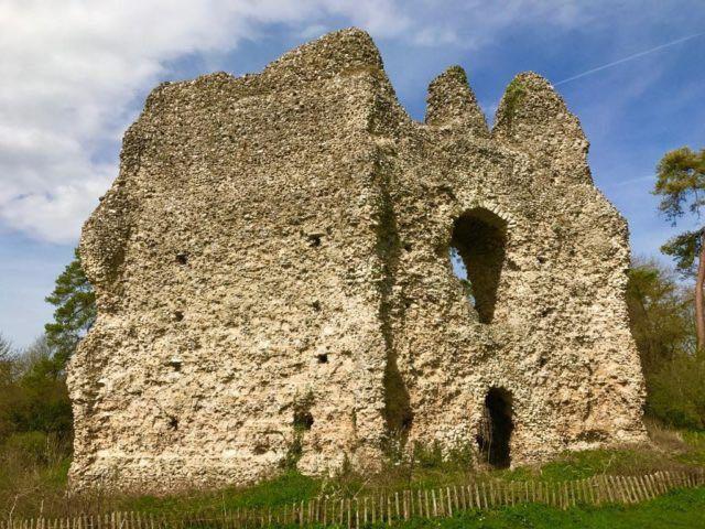 Il-castello-di-Odiham-in-Hampshire-04