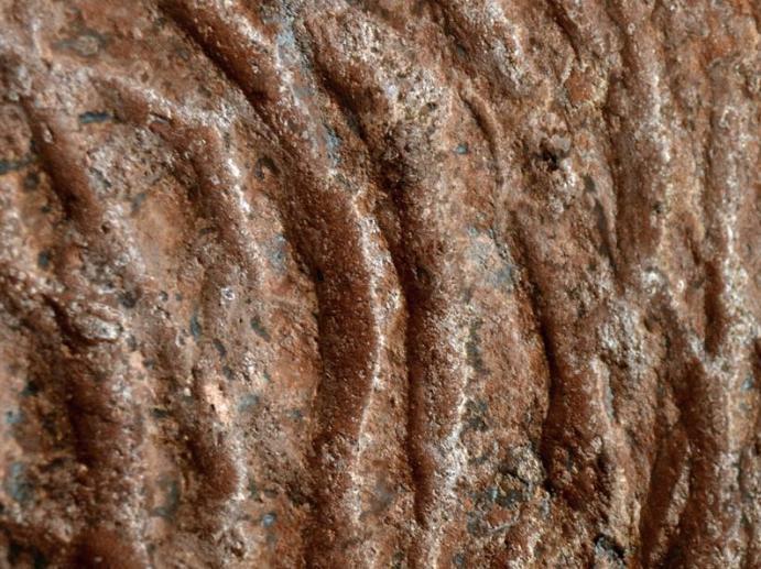 Paleotoca preistoriche