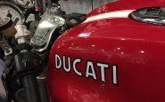 Ducati Cucciolone