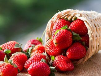 Fragole essiccate: proprietà, calorie e ricette