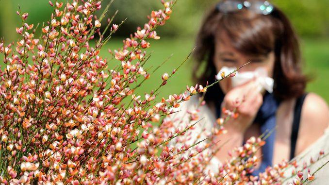 Allergia ai pollini e prurito alla pelle: cosa fare
