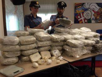 Torino, 200 kg di marijuana: sequestrati in un camion di trasporti