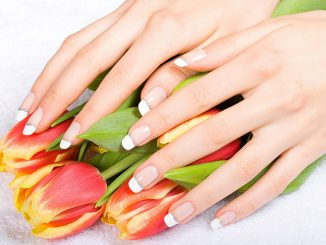 1441051973_tulips_lovely_hands_nature_beautiful_colors_hd-wallpaper-585122-900x574