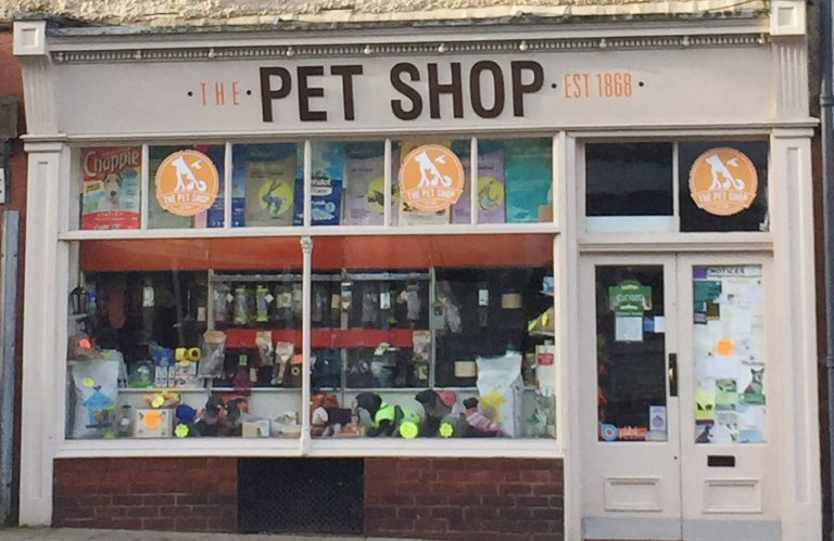 Pet shop: ecco come aprire un negozio per animali