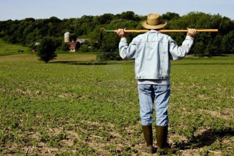 Partita Iva per imprenditori agricoli: come fare per aprirla
