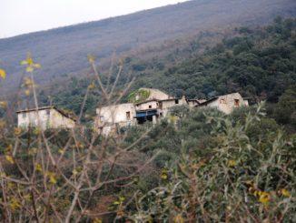 Il borgo dietro alla vegetazione