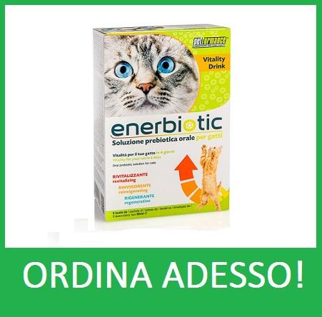 ENERBIOTIC CAT