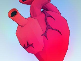 Come ridurre la frequenza cardiaca e combattere lo stress