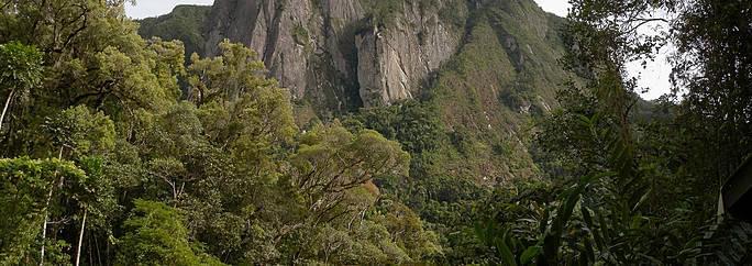 parco-nazionale-di-marojejy