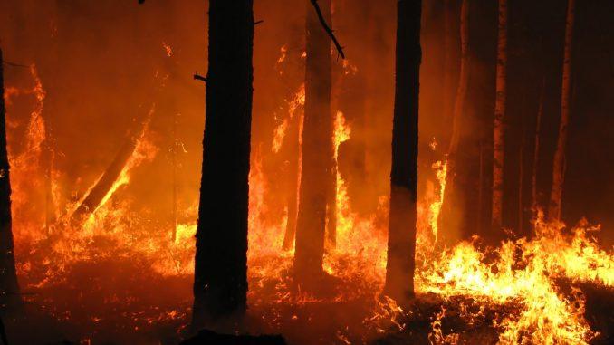 Costa Azzurra brucia, oltre 10mila evacuati: inferno di fuoco nella notte