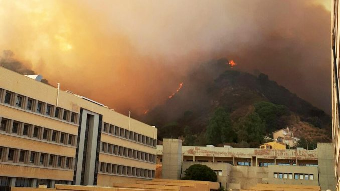 Incendio a Messina, i piromani sono tre minorenni