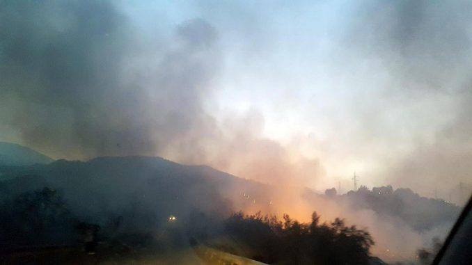 Incubo incendi, nuovamente in fiamme il Vesuvio