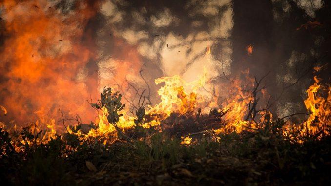 Rogo in un campo, 79enne muore tra le fiamme nel teramano