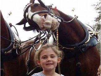 ragazza foto con cavallo