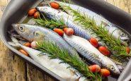 Pesce azzurro: proprietà e come consumarlo