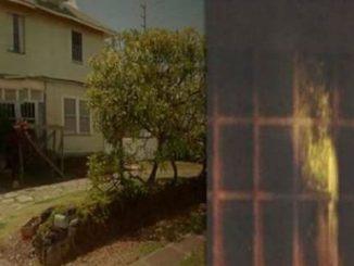 Kaimuki House: il massacro nella casa degli orrori a Honolulu
