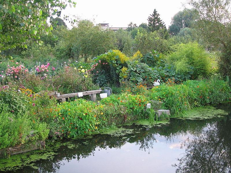 Hortillonages, Amiens