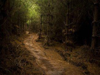 Wiccademous Grave: il mistero della tomba della strega bambina