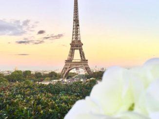Curiosità sulla Francia