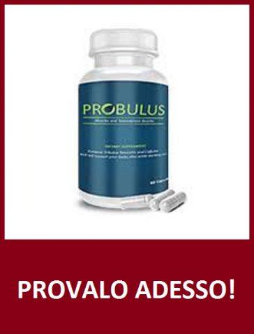 probulus