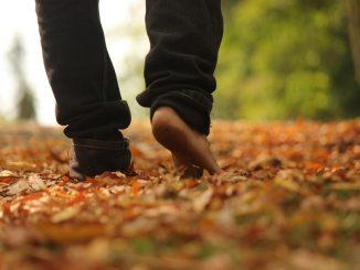 walk 2664125 1280