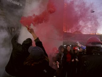 Manifestazione studentesca 17 novembre