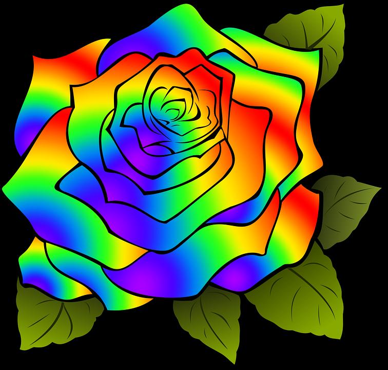 Come Disegnare Una Rosa Messaggi E Significati Di Questo Fiore