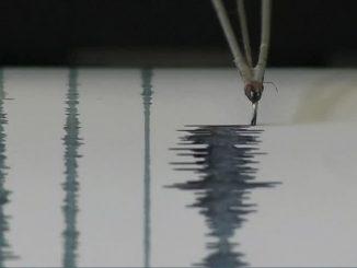 terremoto java