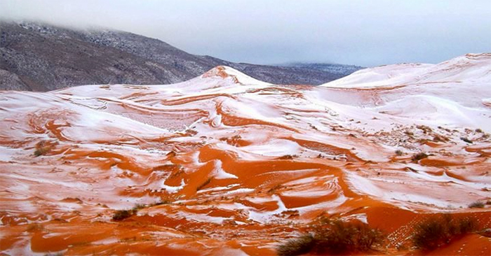 Sahara, le immagini spettacolari della neve nel deserto