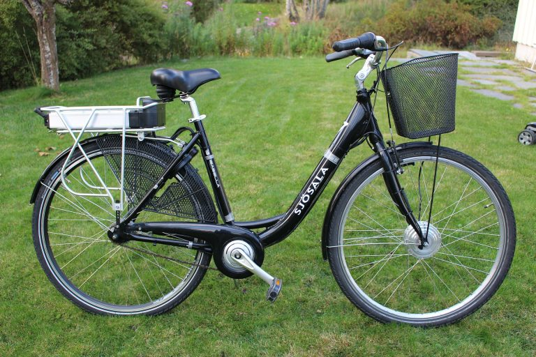 Bicicletta elettrica: come funziona e quanto costa