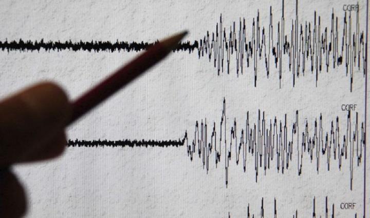 sismografo 2